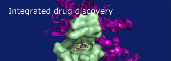 Integrated drug discovery outsourcing