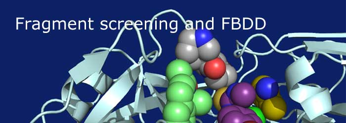 Fragment screening and fragment-based drug discovery outsourcing co